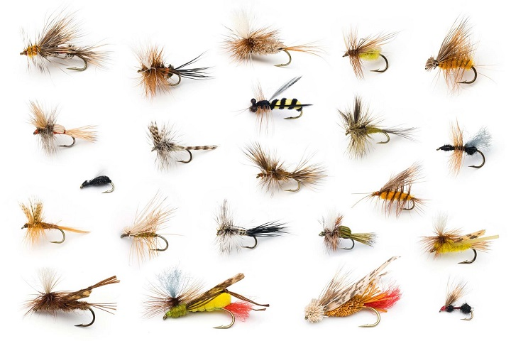 the art of the fly - the citadel fine arts, Fly Fishing Bait