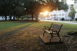 campus_bench