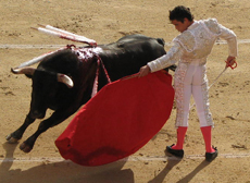 A bullfight in Madrid