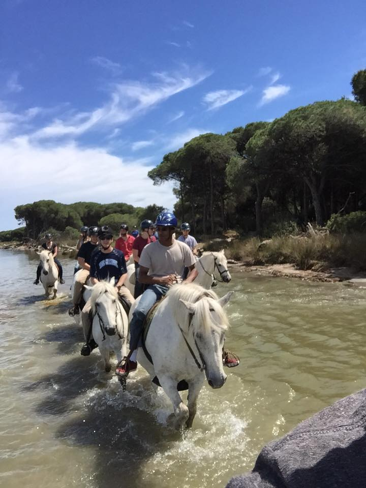riding horses in camargue 2
